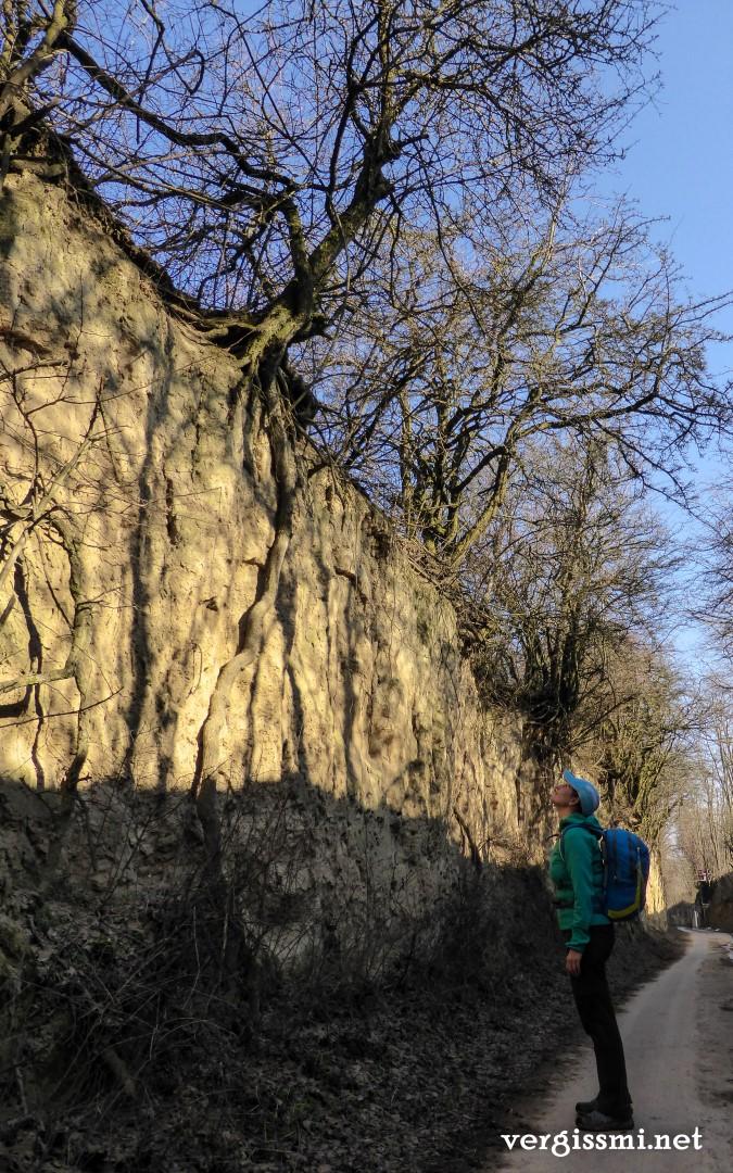 Kreuttal Rundwanderweg11 (Large)