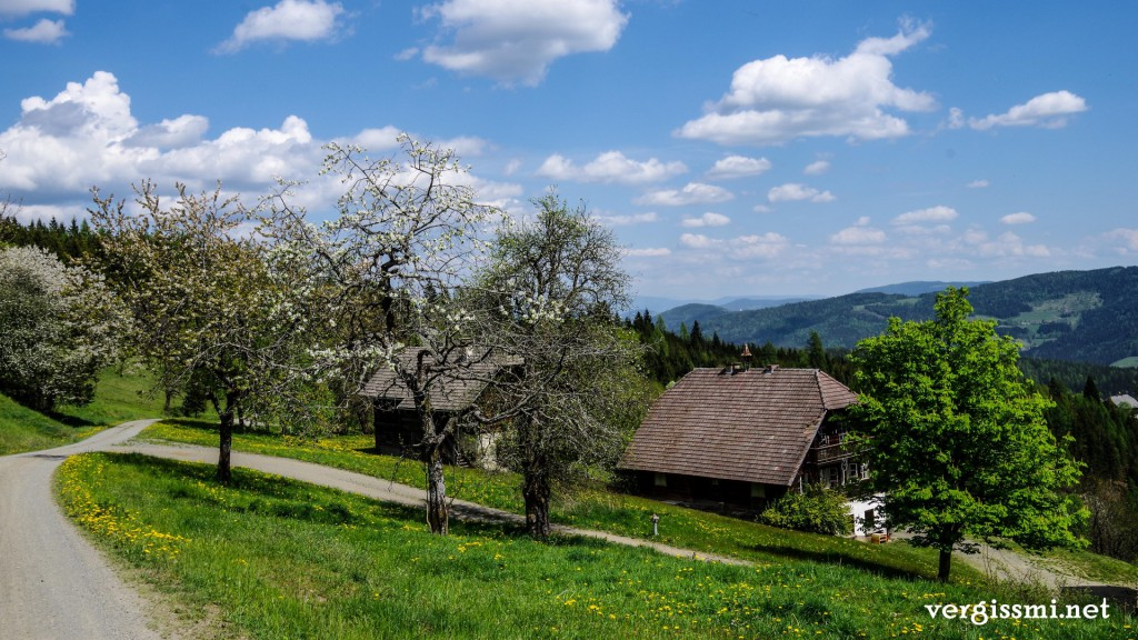 Gnesau-Friesach (7)